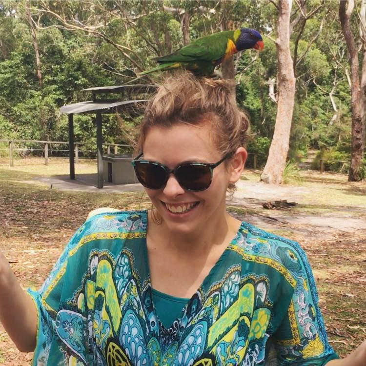 smile bird